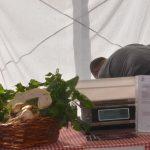 mercado ecologico