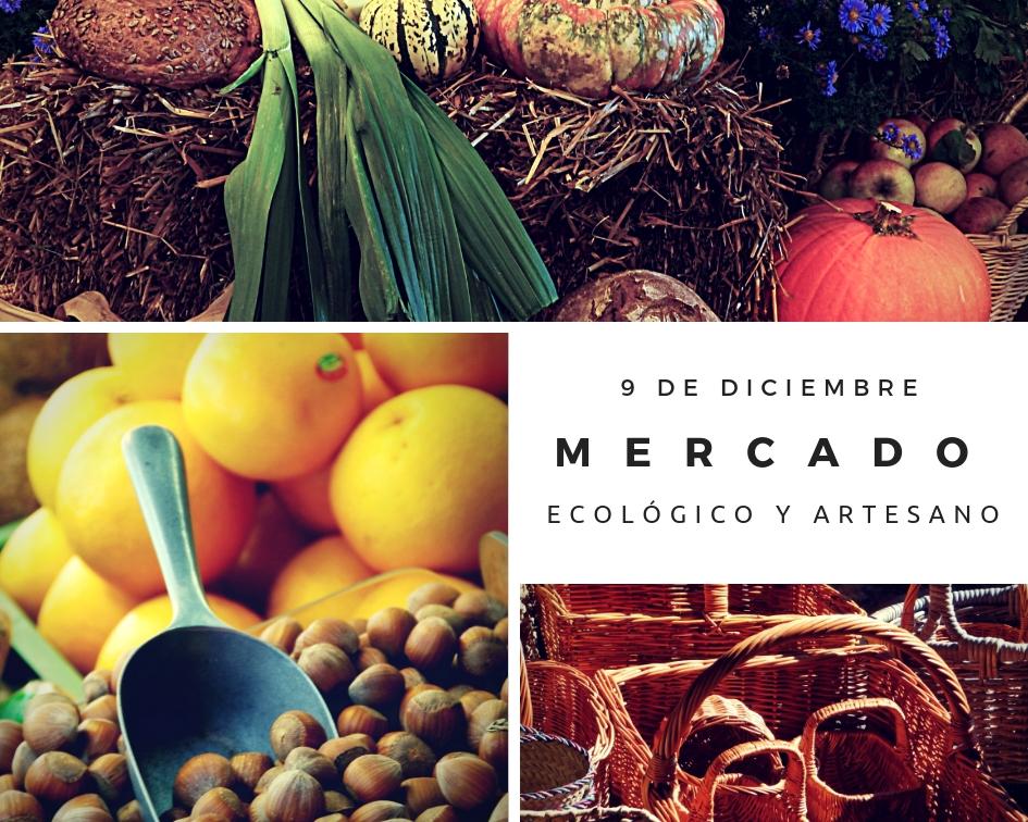 Mercado Ecologico y Artesano